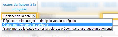 Possibilité de déplacer ou copier des articles dans une catégorie du site rapidement. Possibilité également de supprimer plusieurs fiche article en même temps.