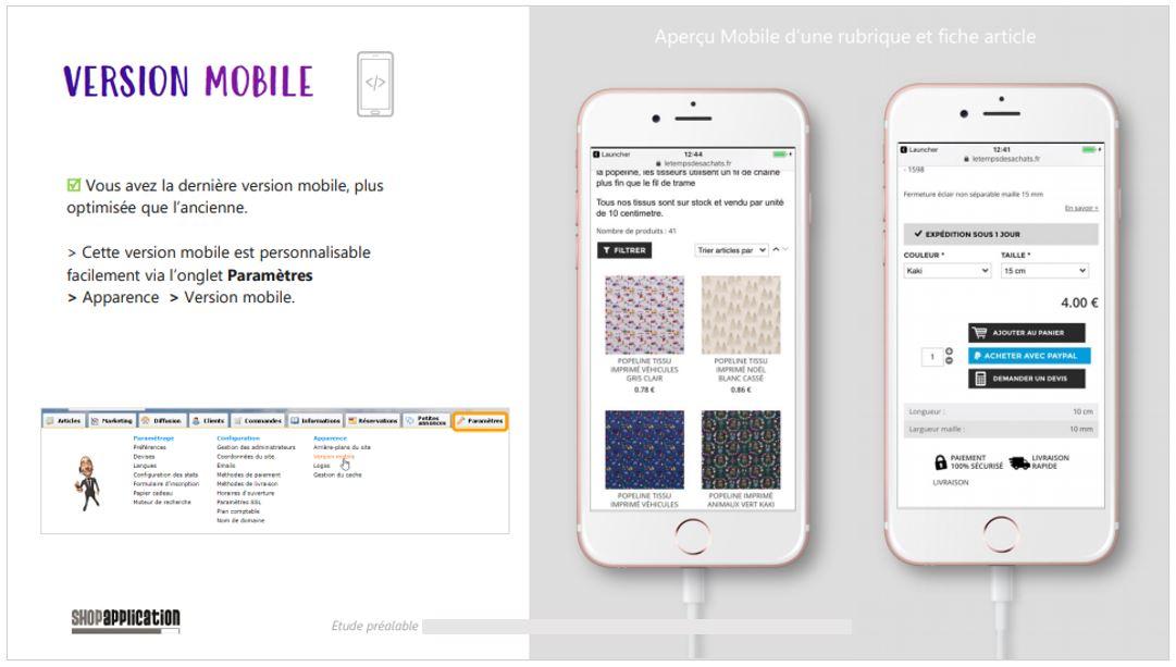 Audit Référencement naturel SEO : Affichage version Mobile - Shop Application