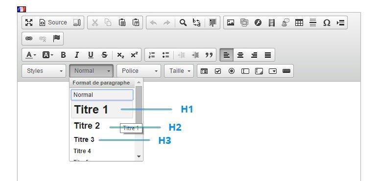 Referencement naturel : Editeur de texte Shop Application pour inserer facilement ses balises de titres h1, h2, h3