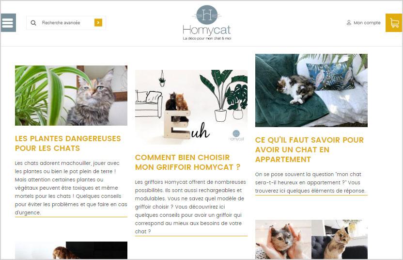 Creation de blog sur le site de vente Homycat : Mobiliers modernes pour chats