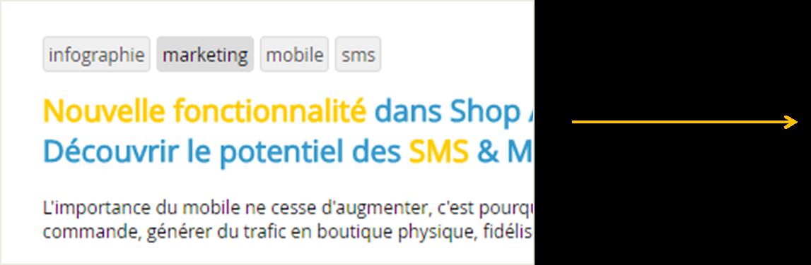 La fonctionnalite des mots cles ou tag pour votre site internet avec Shop Application